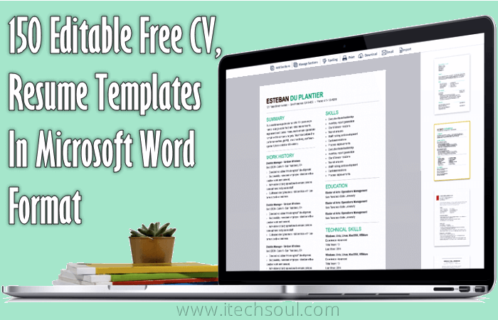 Editable Free Resume Templates Word