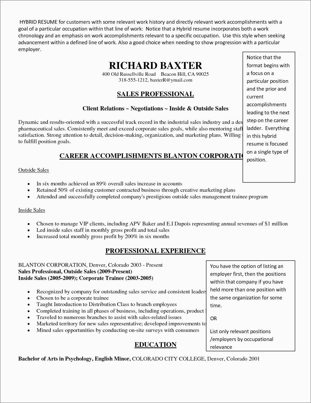 Free Hybrid Resume Template Word Prettier Hybrid Resume Template Best Solutions Of Sample Hybrid