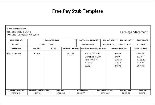 Pdf Pay Stub Template Free