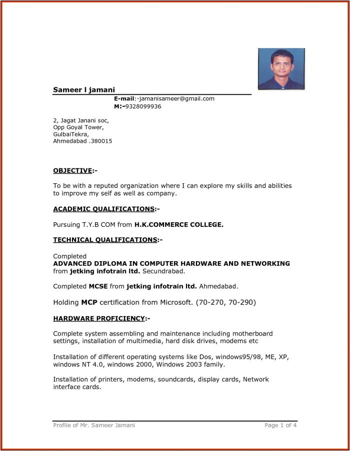 Professional Resume Format In Word Free Download