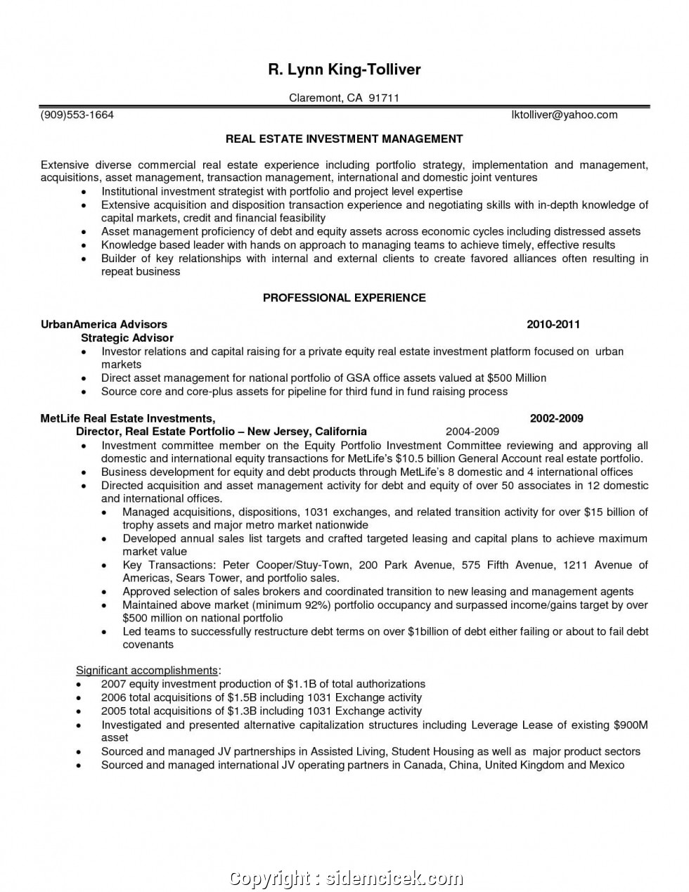 Real Estate Investor Resume Examples