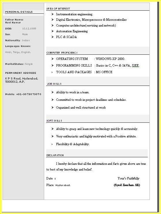 Simple Resume Format In Word Free Download