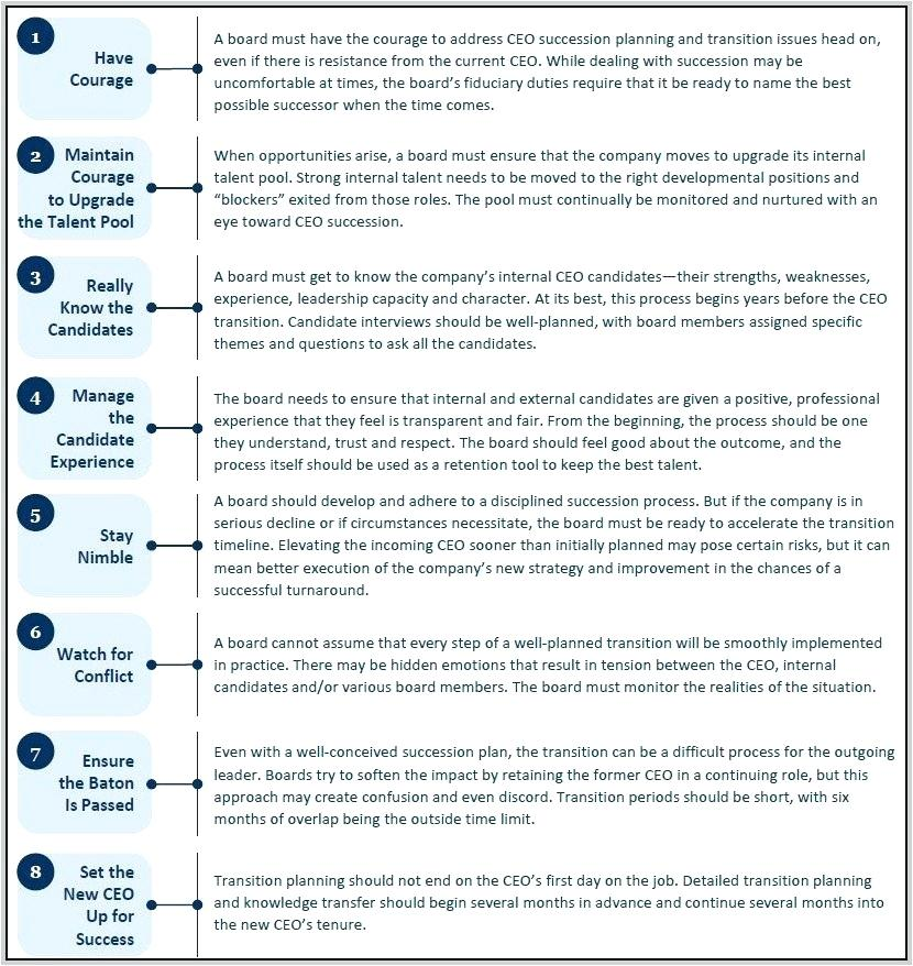 Ceo Transition Plan Template