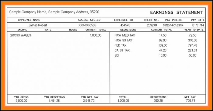 Downloadable Blank Pay Stubs Template