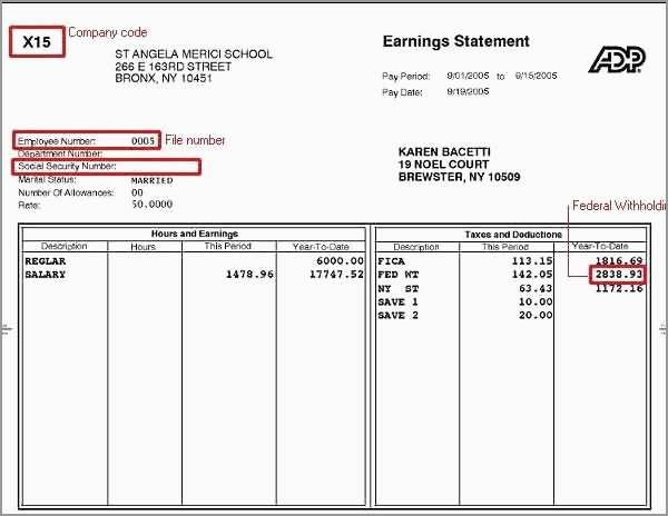 Pay Stub Template Word Document Free Astonishing Free Paystub Template