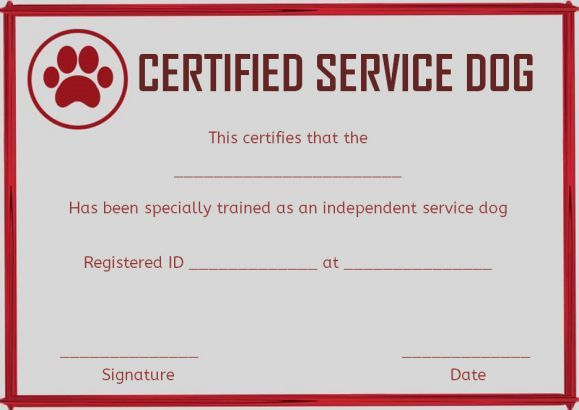 Service Dog Training Certificate Template