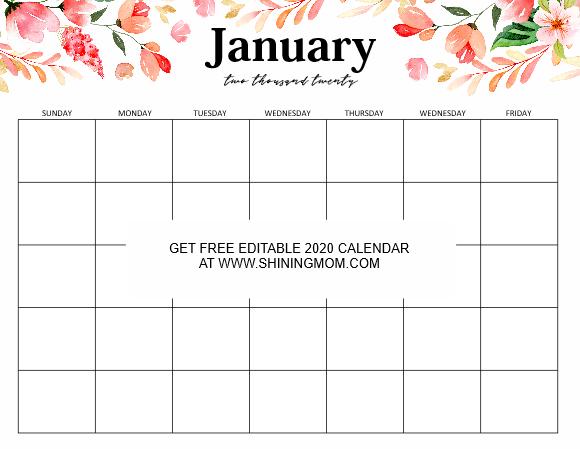 2020 Calendar Editable Template