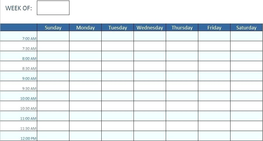 8 Hour Nursing Schedule Template