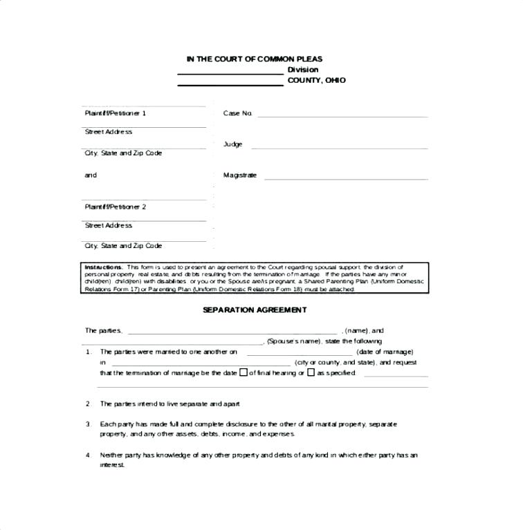 Common Law Partner Agreement Template
