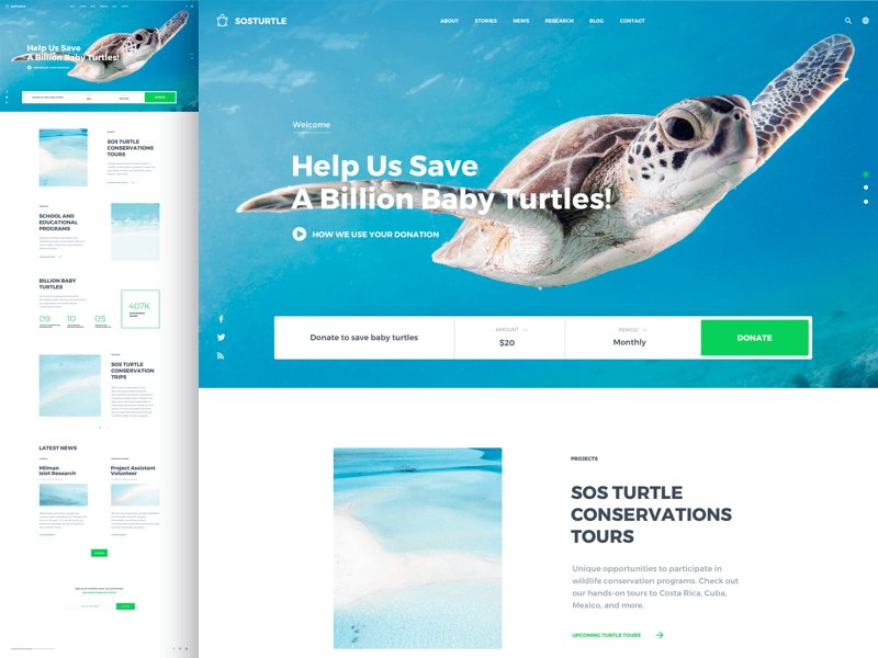 Ngo Website Template Free Download