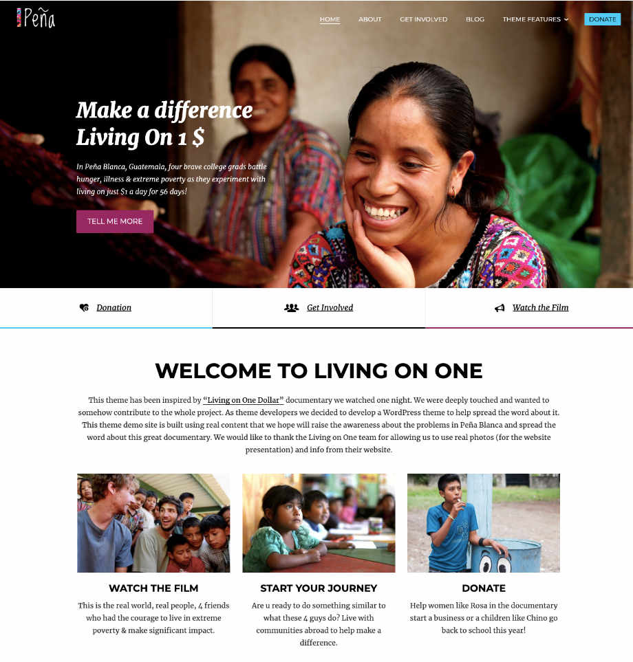 Ngo Website Template