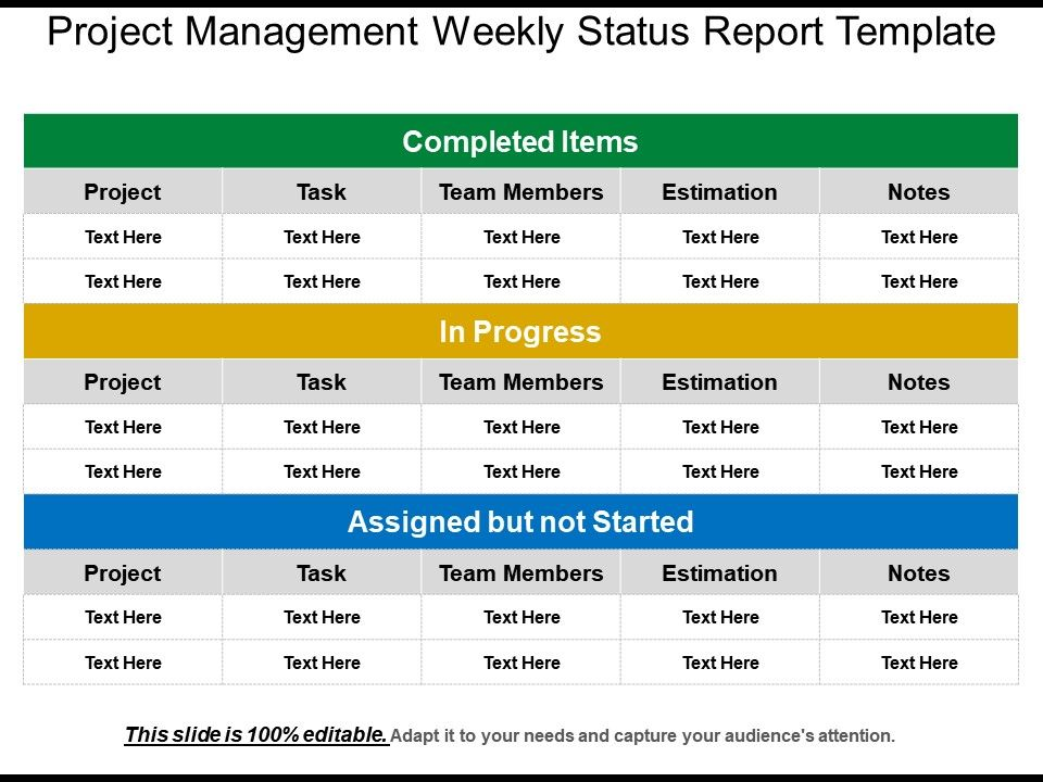 Powerpoint Project Management Status Report Template