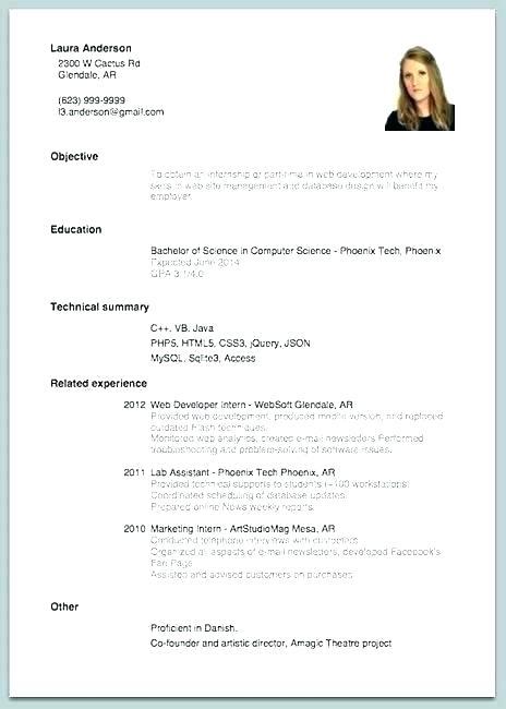 Beginner Resume Template For Students