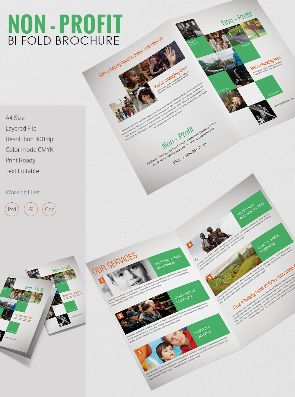 Bi Fold Brochure Template Illustrator Free