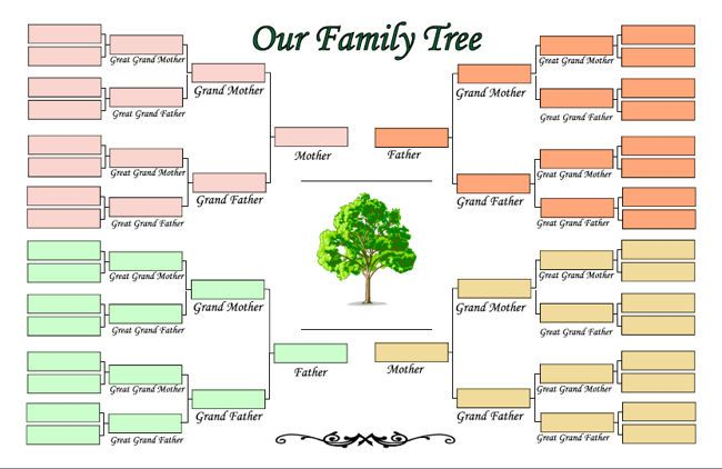 Blank Template Family Tree Maker