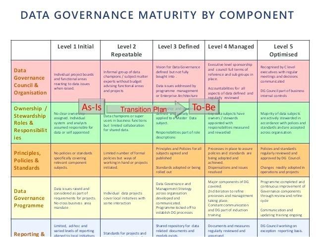Data Governance Project Plan Template