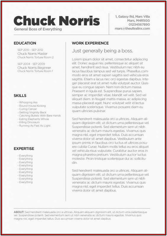 Free Resume Templates For Macbook Pro Amazing Free Resume Template For Mac Os X