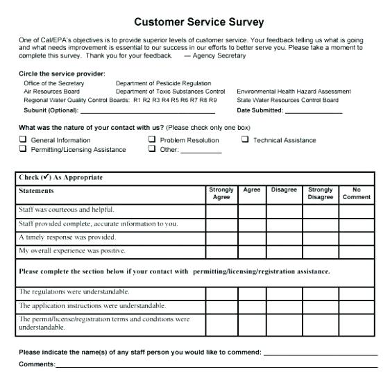 It Customer Satisfaction Survey Template