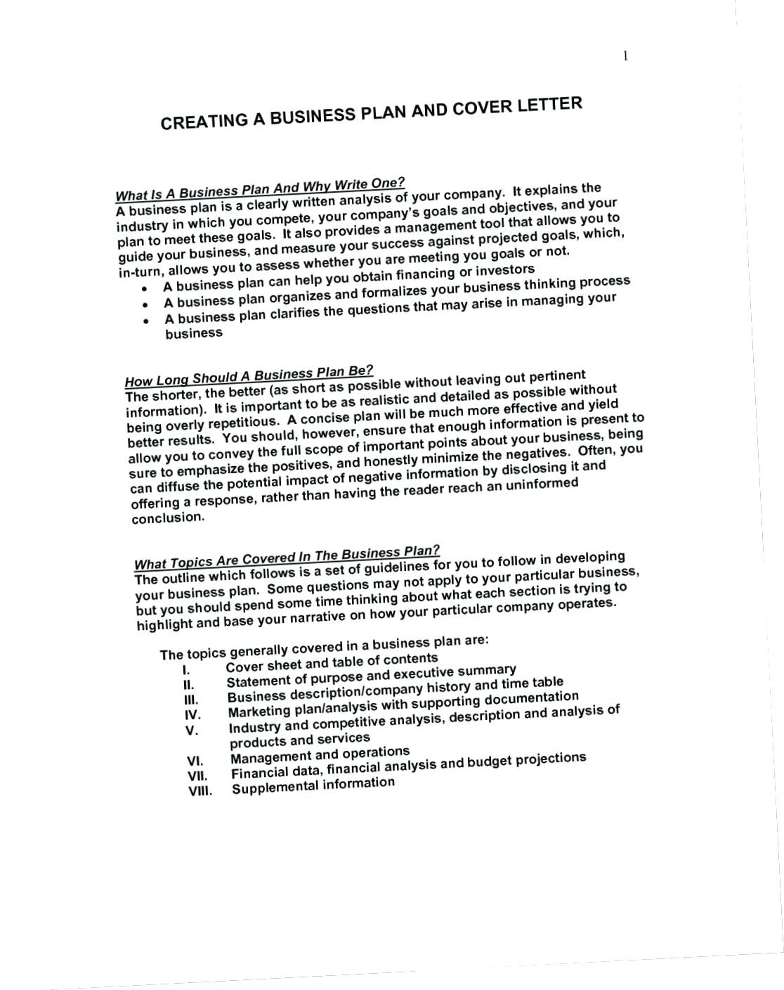 Sbagov Business Plan Template