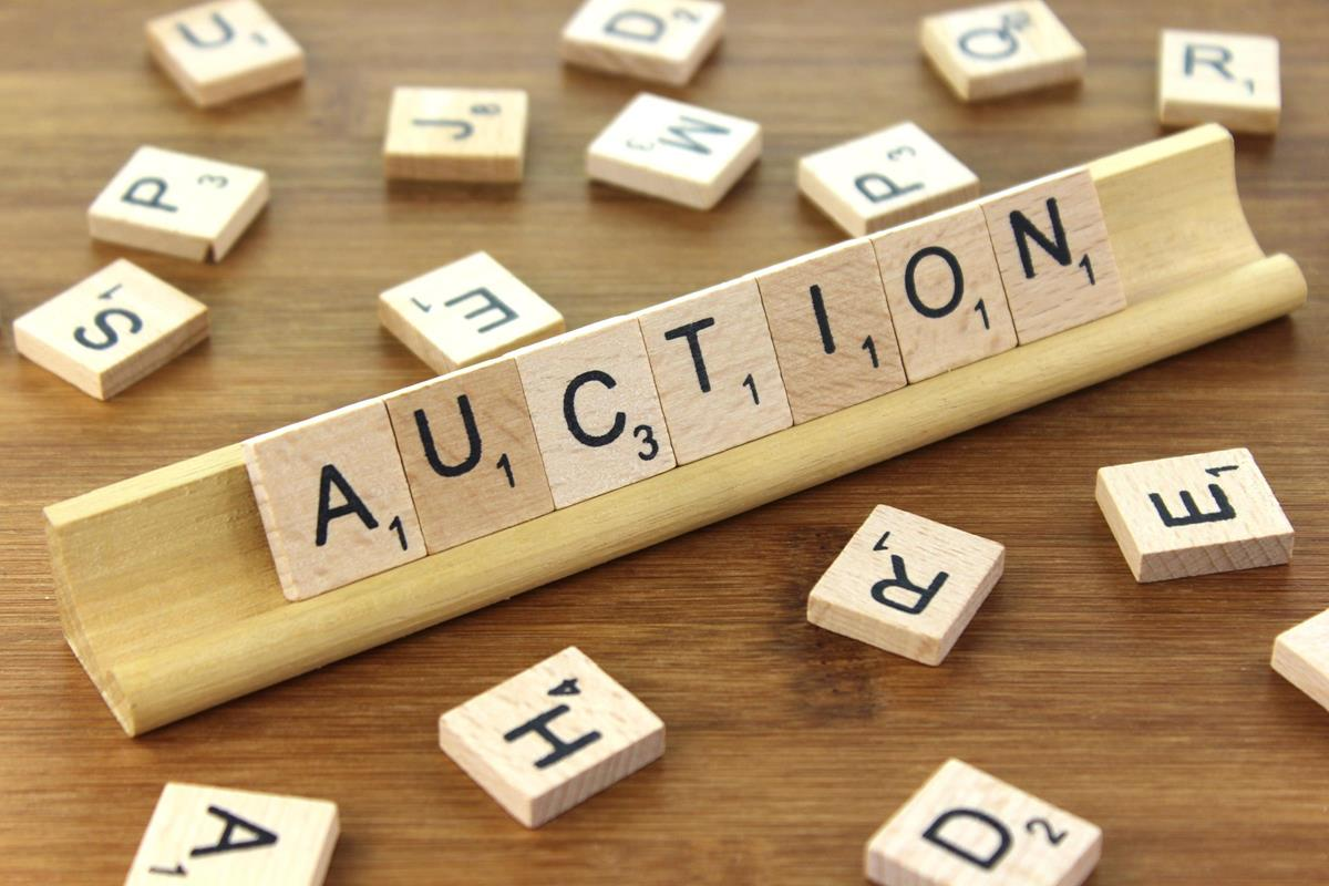 Auction Paddles Template