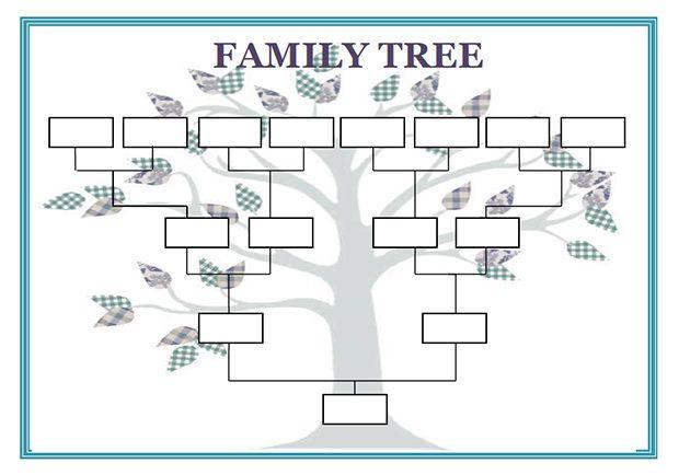 Blank Family Genogram Template