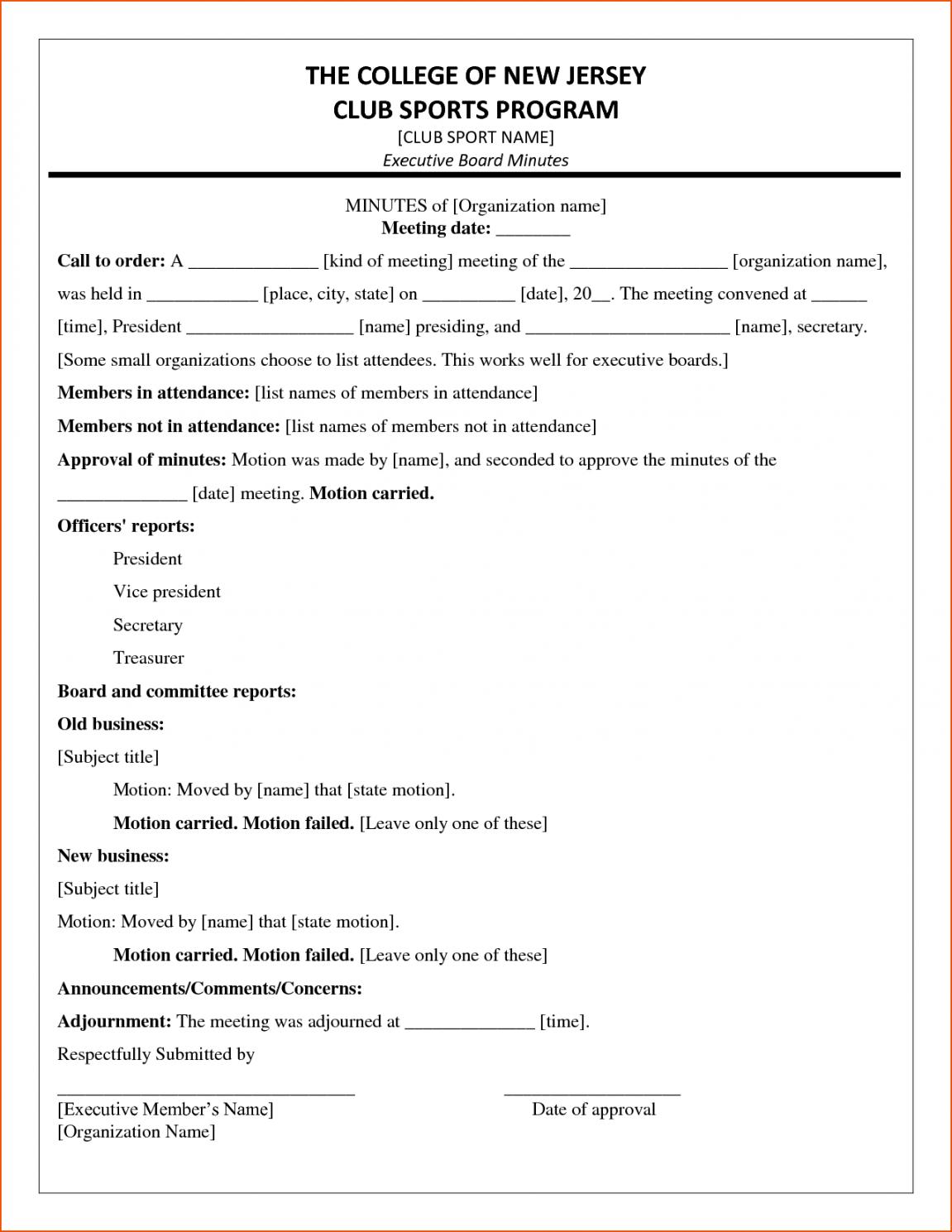Free Llc Meeting Minutes Sample Canasbergdorfbibco Organizational Meeting Minutes Template Pdf
