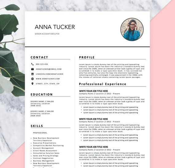 Modern Resumes Templates