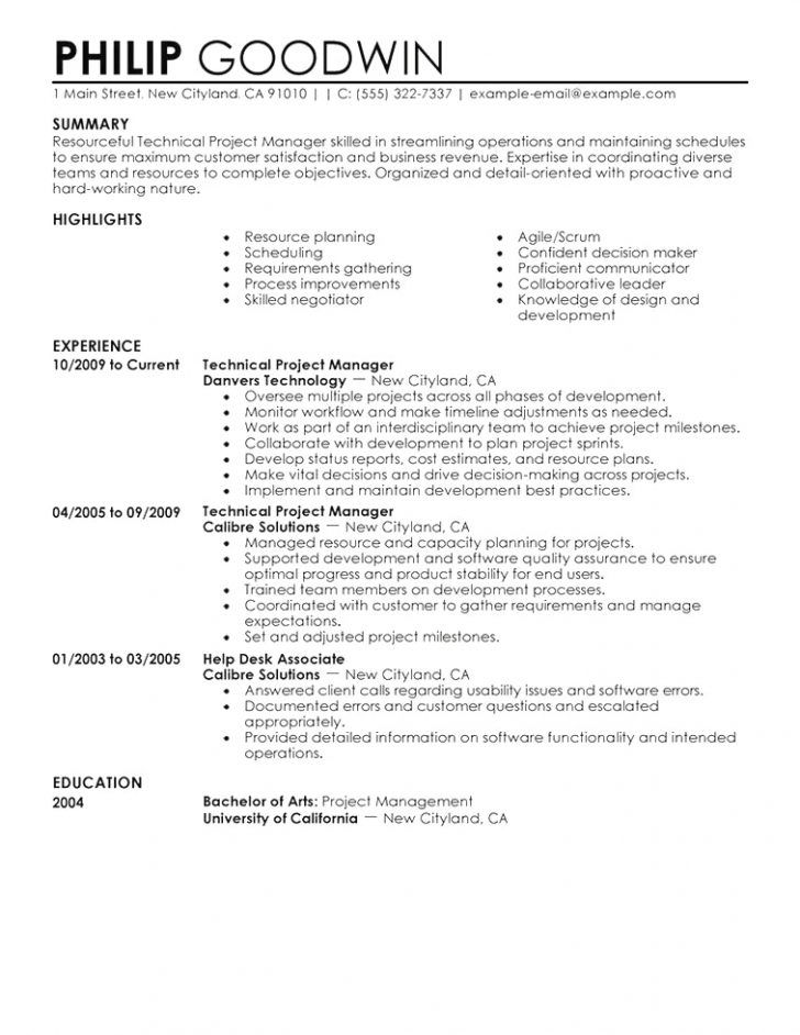 Professional Resume Resume Template Singapore