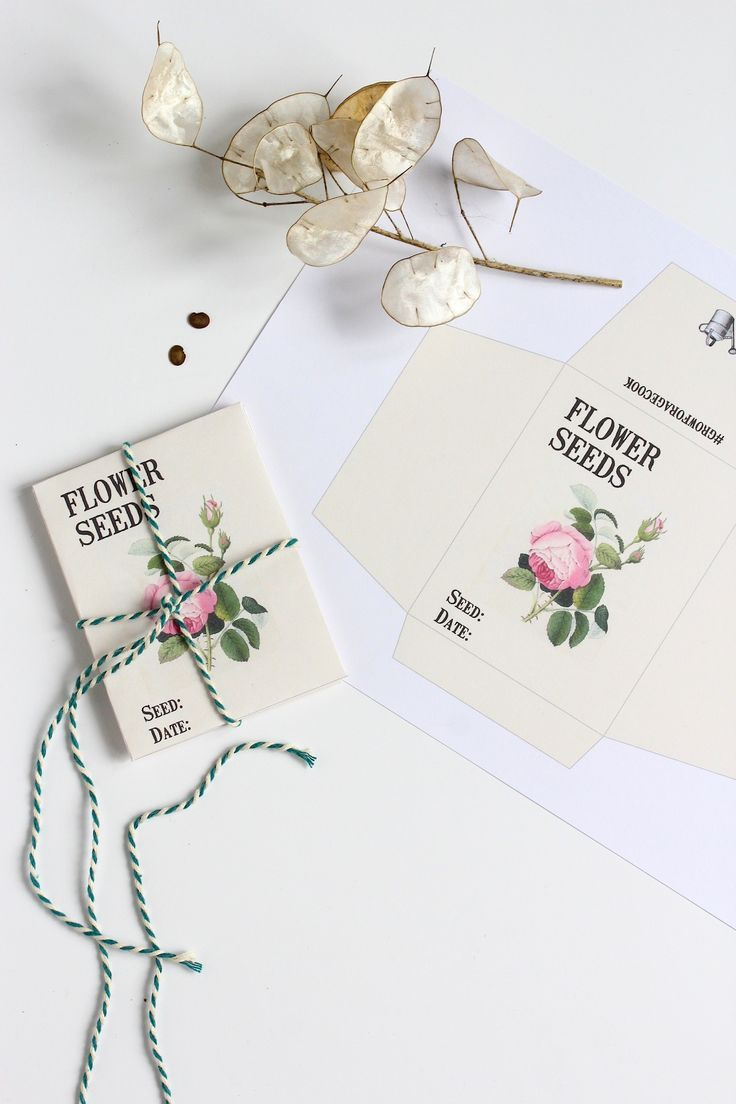 Seed Envelopes Template