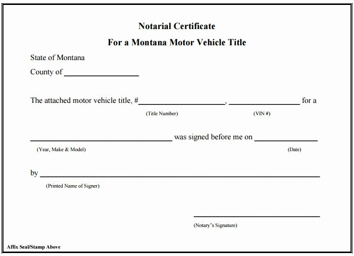 Texas Notary Signature Template