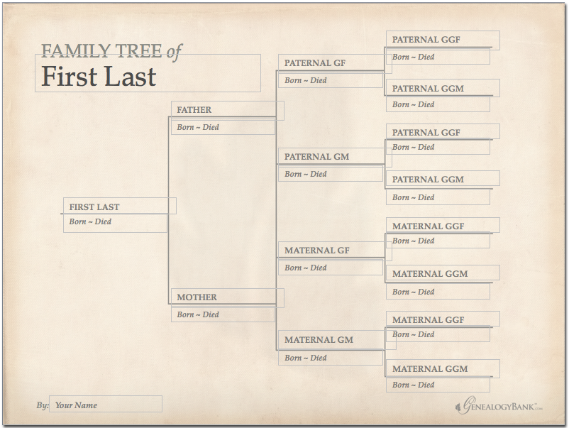 Free Genealogy Family Tree Template
