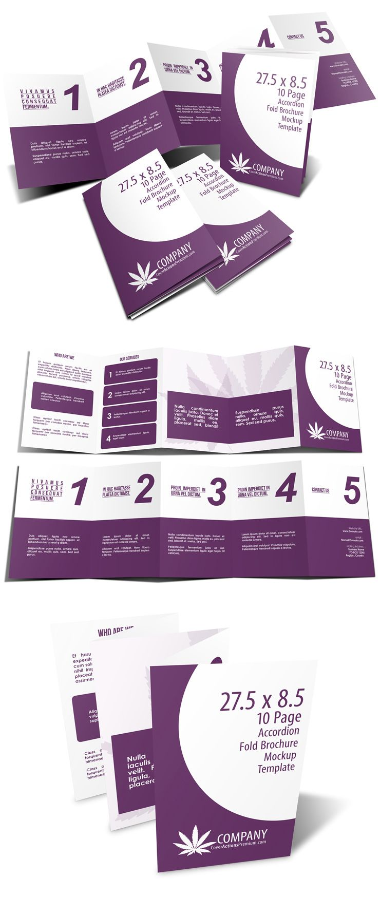 5 Panel Accordion Fold Brochure Template