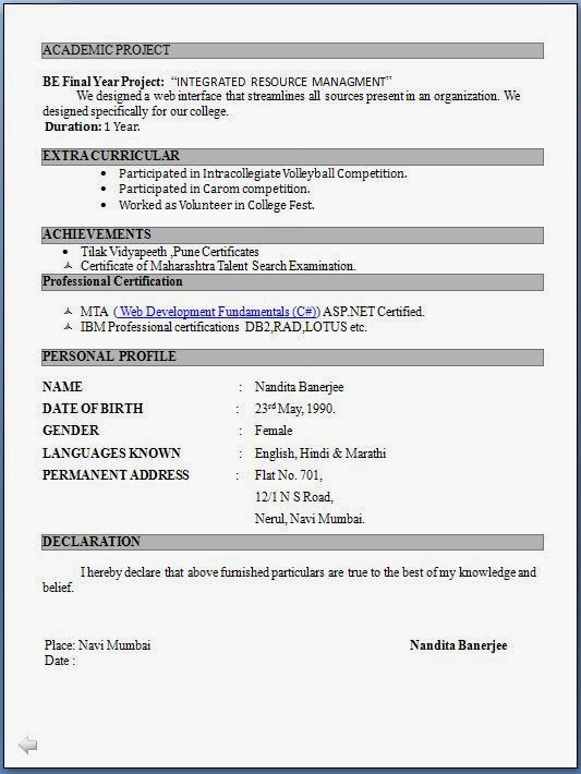 Printable Blank Simple Resume Template