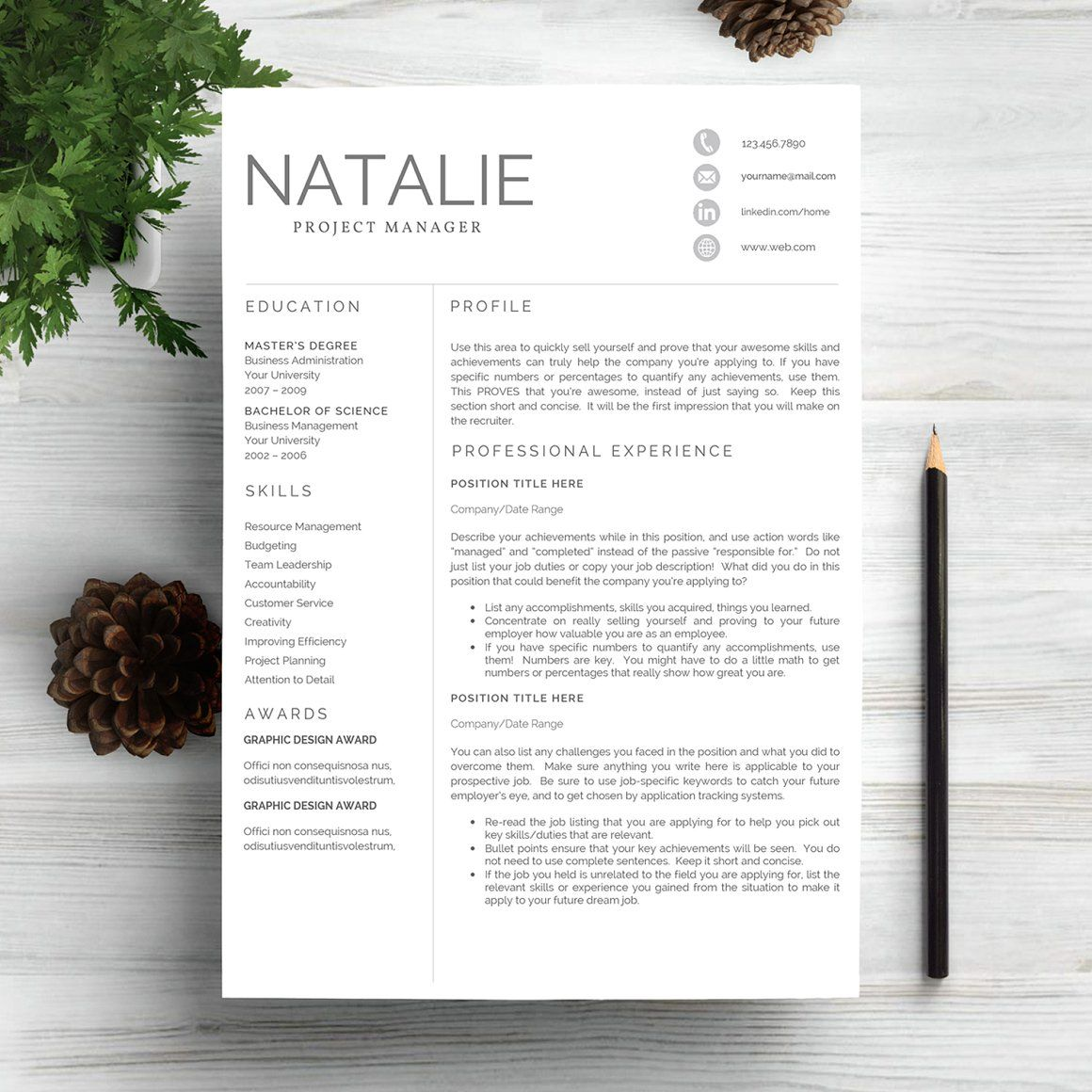 Professional Civil Engineer Resume Template