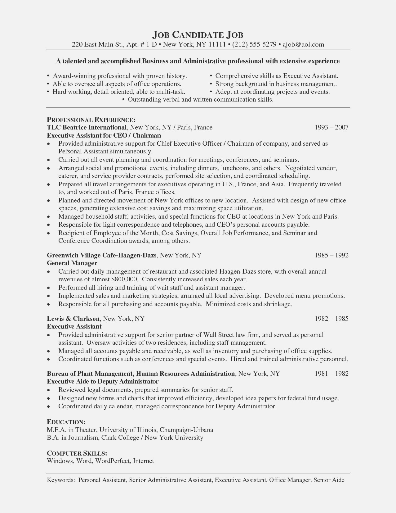 Resume For Sales Executive In India