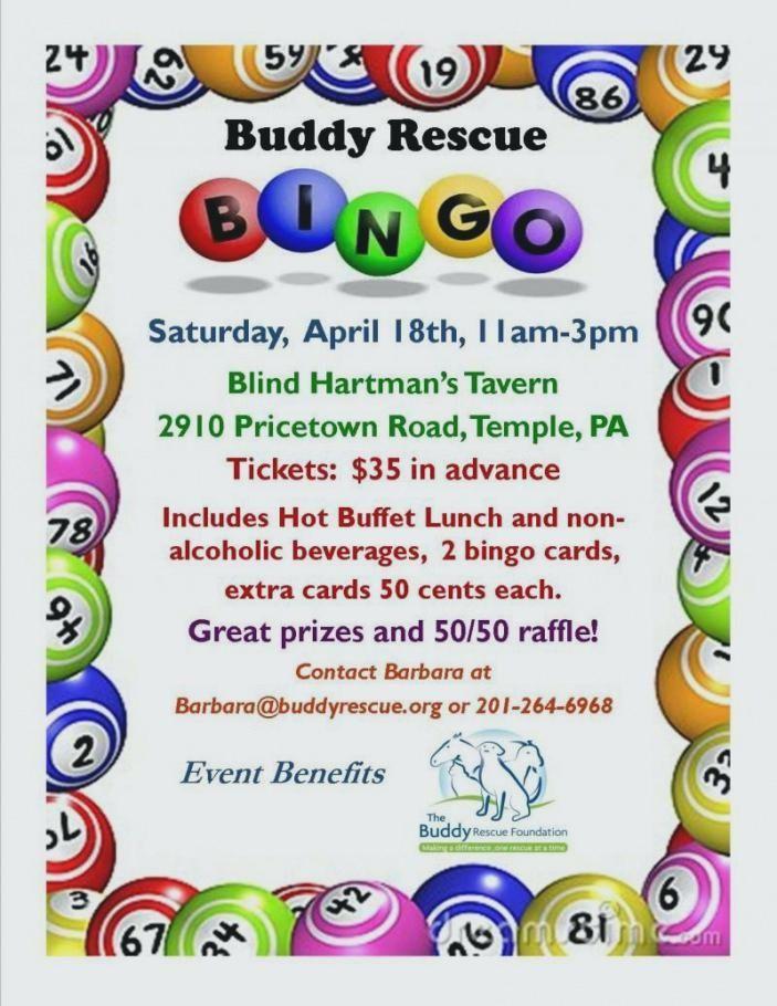 Free Bingo Event Flyer Template