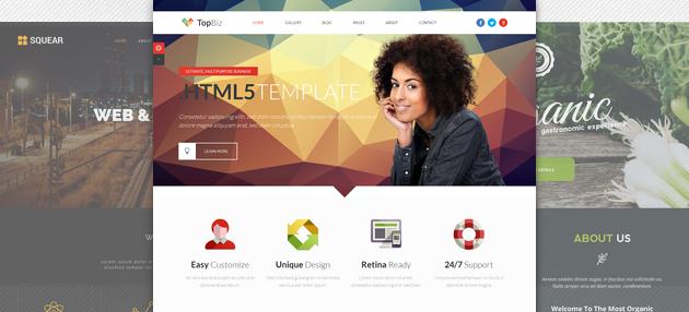 Html5 Templates Premium