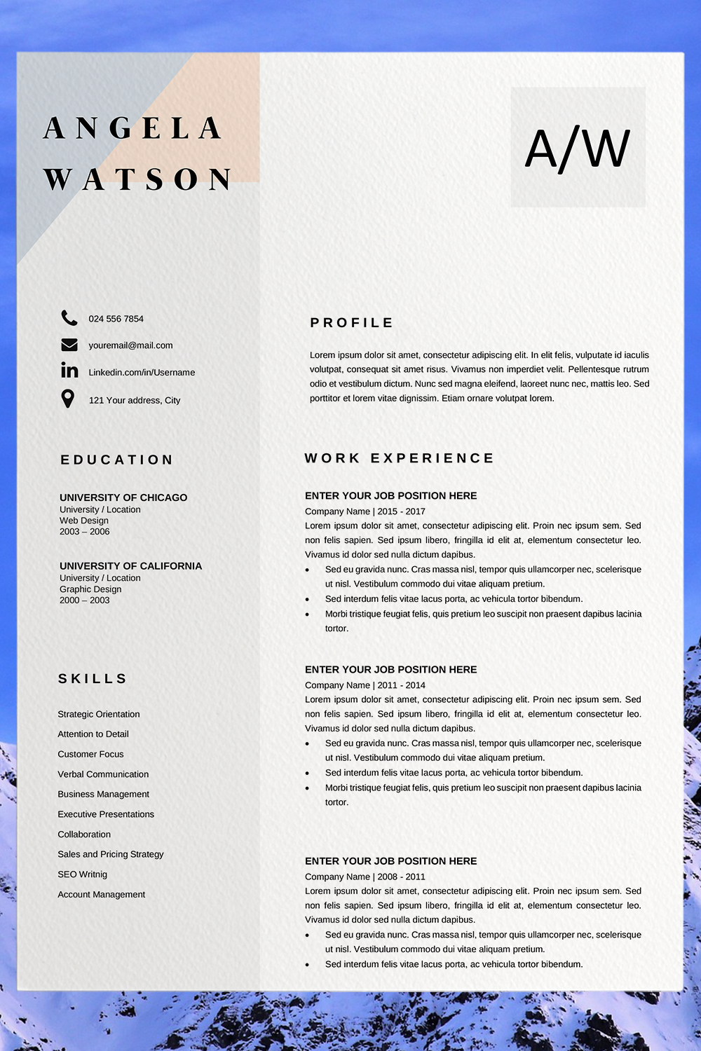 Downloadable Cv Template 2020