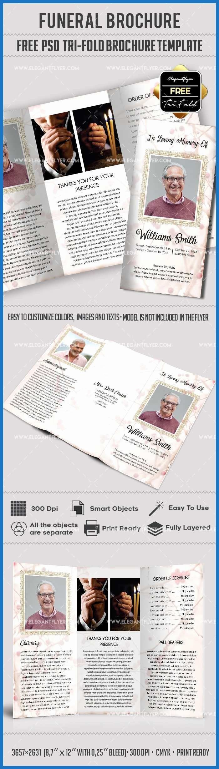 Political Brochure Template Free