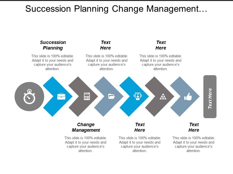 Succession Plan Templates