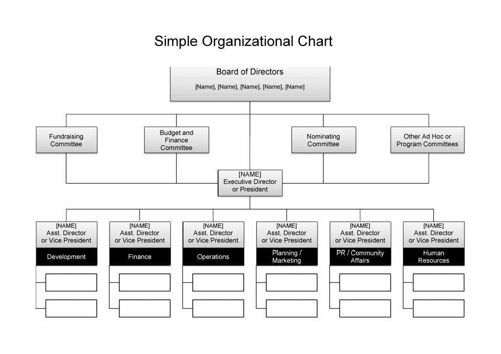 Word Free Organisational Chart Template