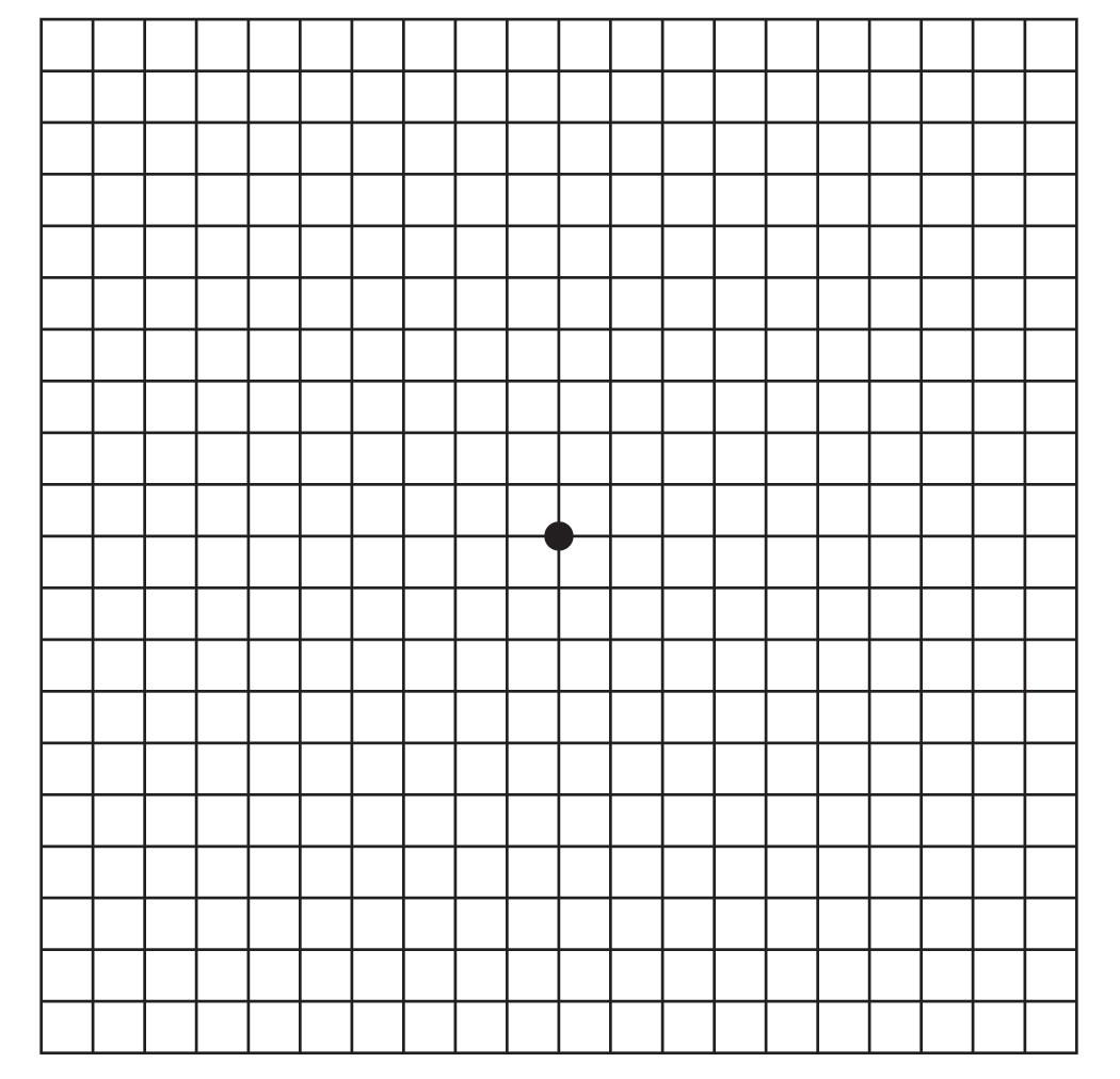 Amsler Grid Pdf Print