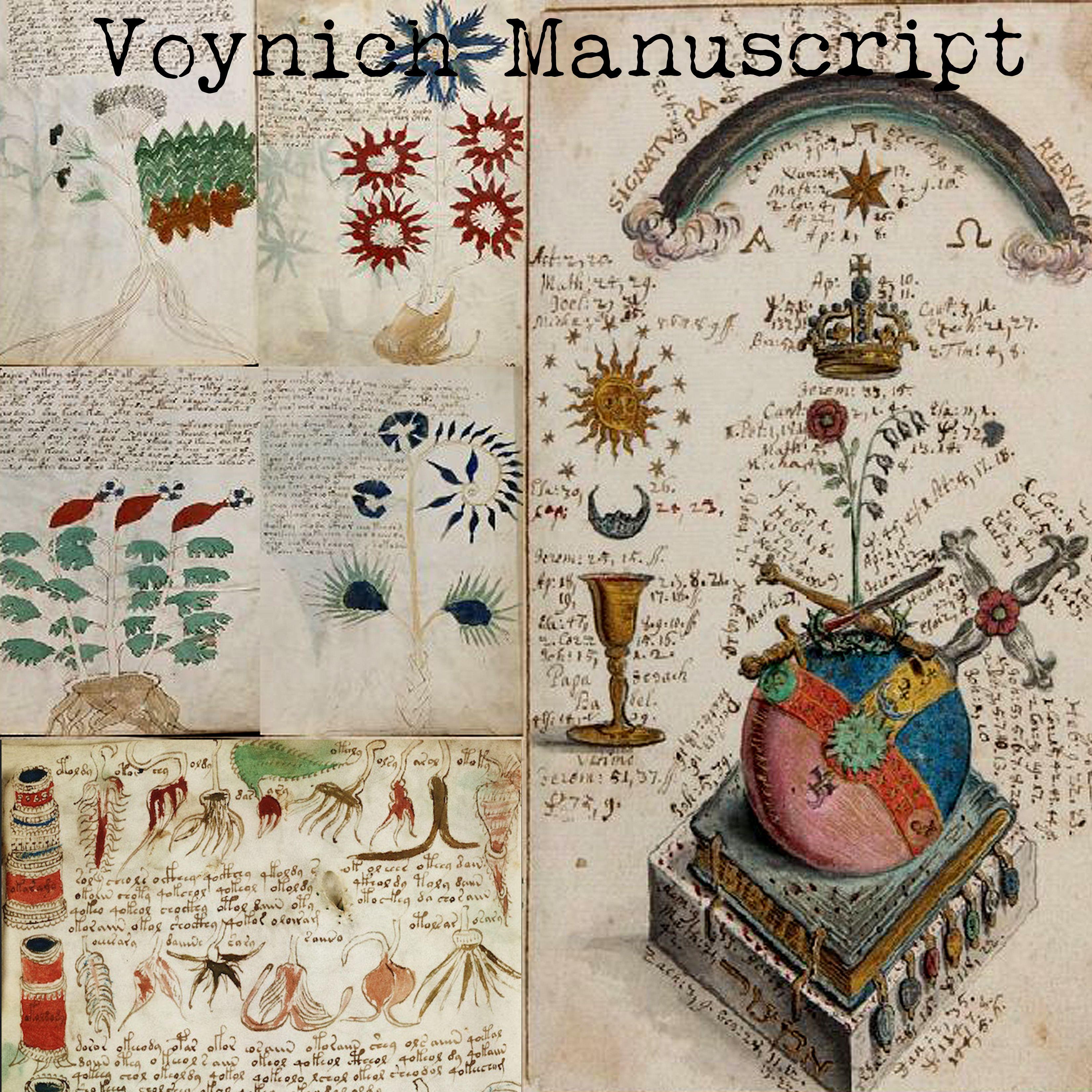 Pdf Voynich Manuscript Book