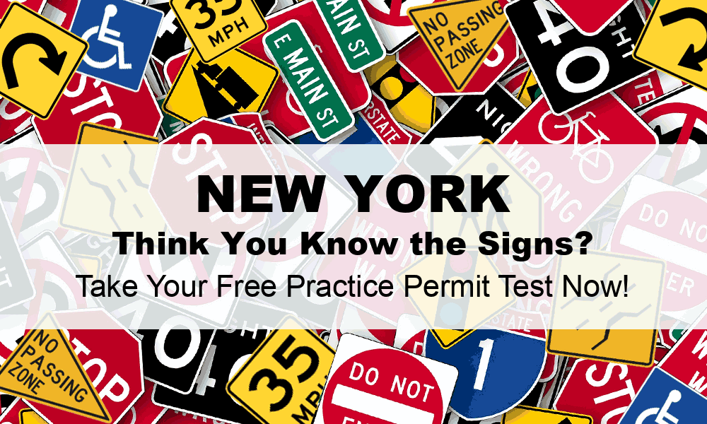 Practice Permit Test Ny 20 Questions Pdf Printable