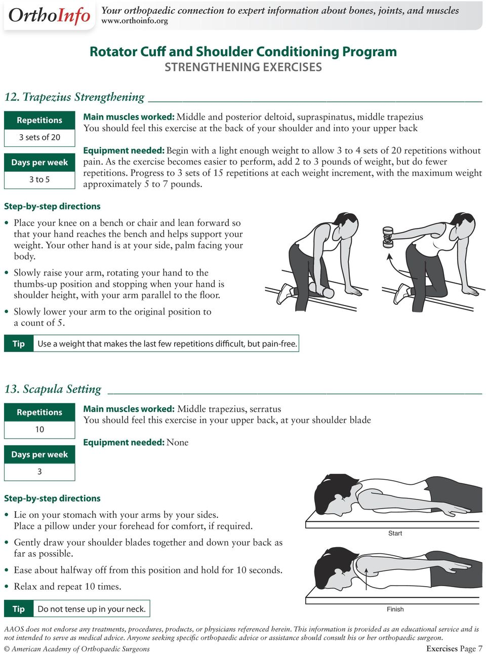 Rotator Cuff Strengthening Exercises Pdf