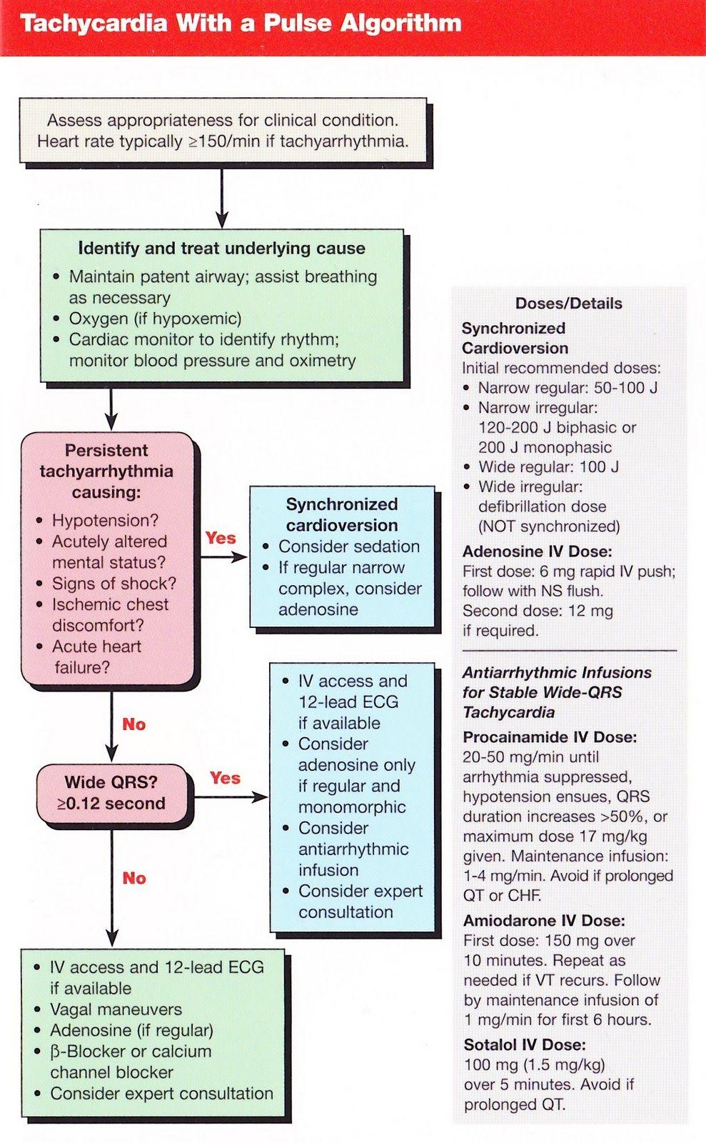 Ventricular Fibrillation Acls Algorithm Pdf