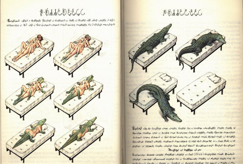 Voynich Manuscript Codex Seraphinianus Pdf