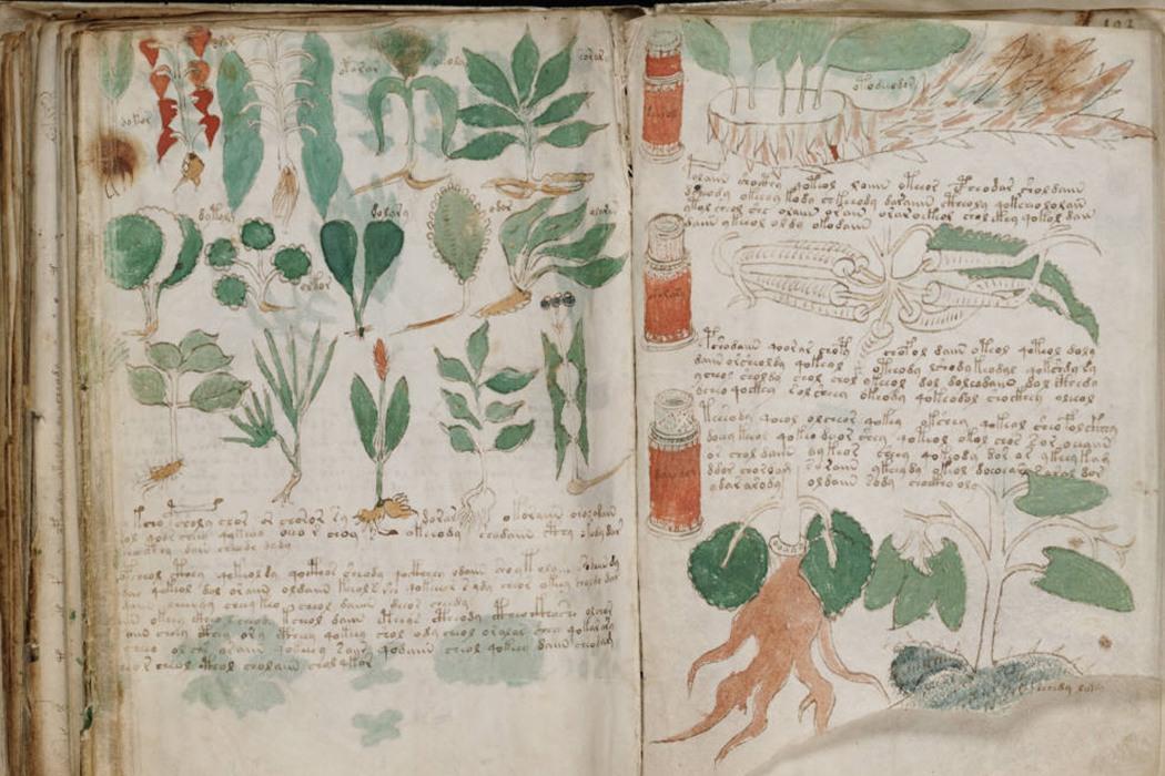 Voynich Manuscript Pdf Free Download