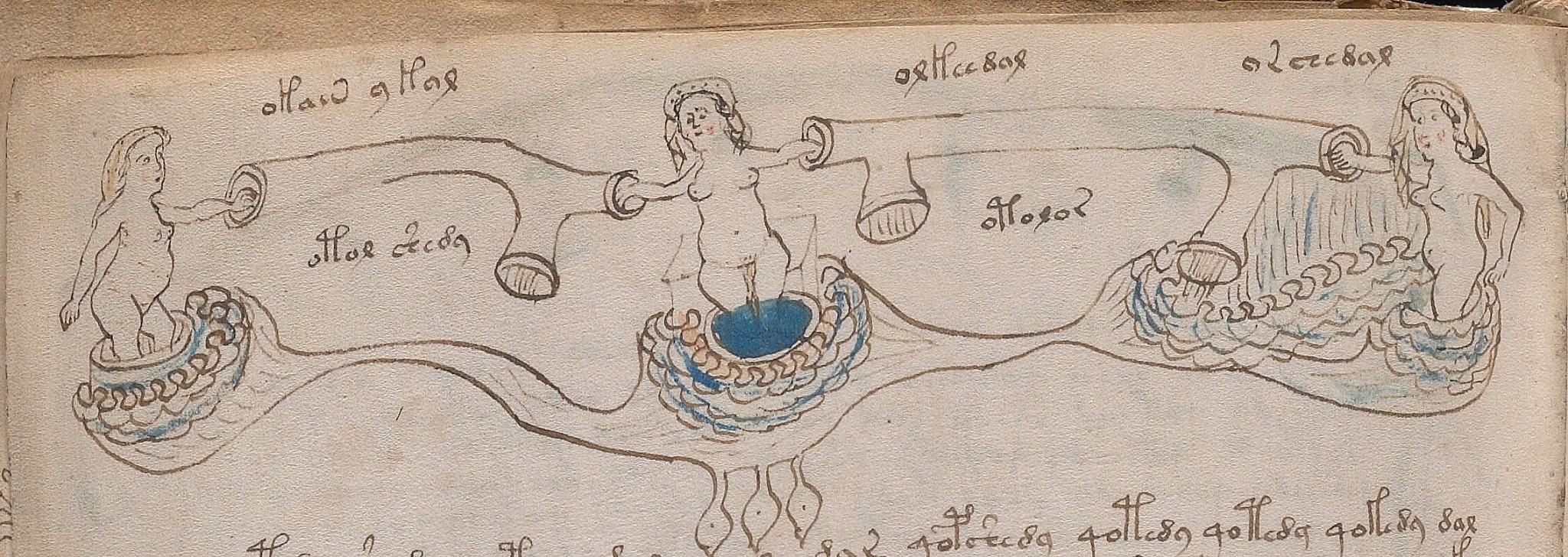 Voynich Manuscript Pdf Free