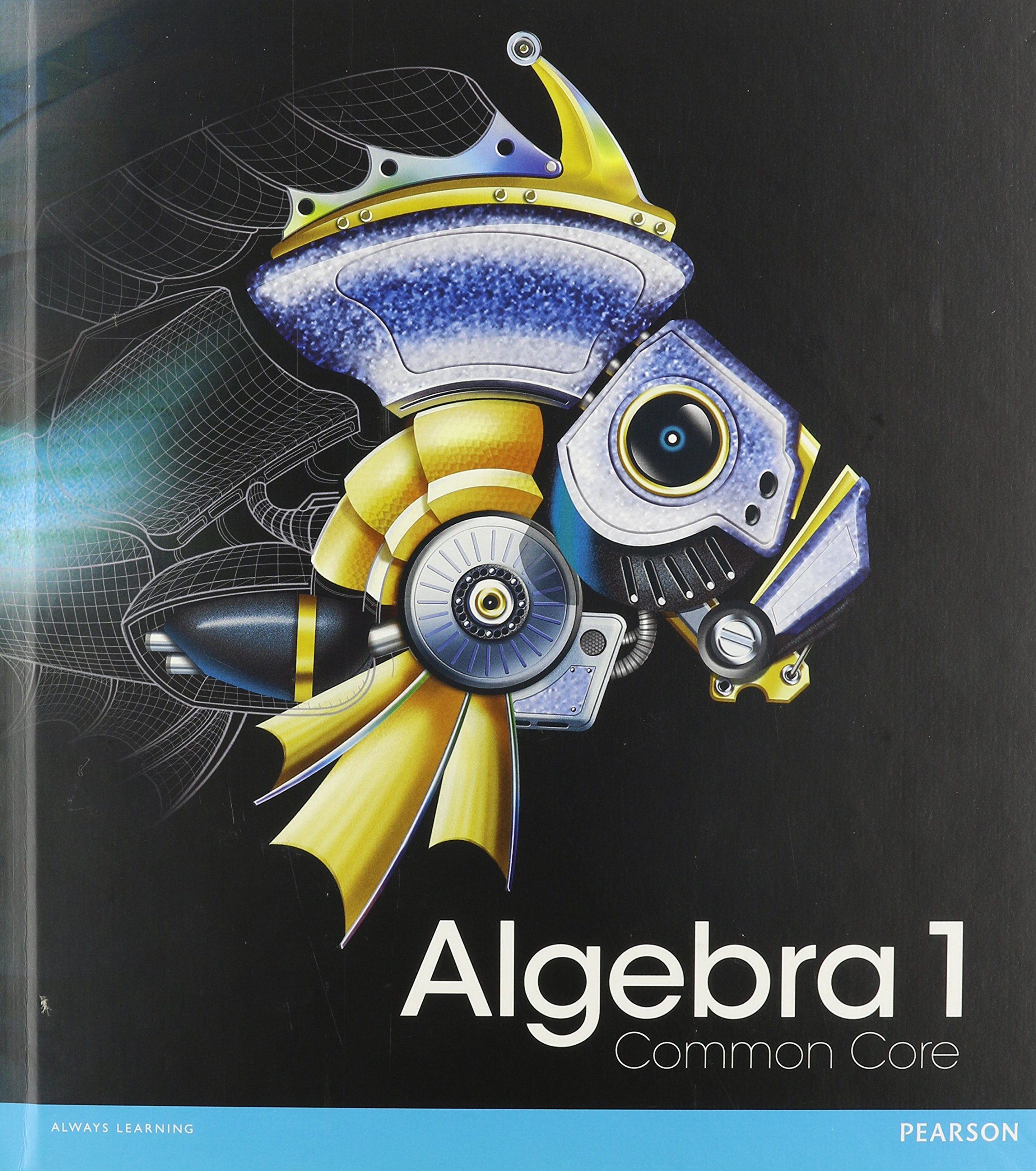 Algebra 1 Common Core Textbook Pdf